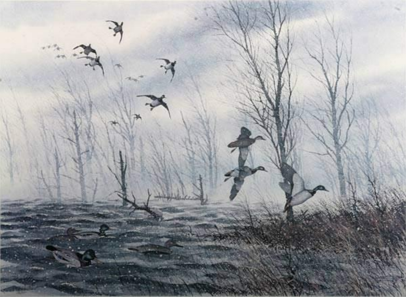painting of a winter scene with ducks by David Hagerbaumer